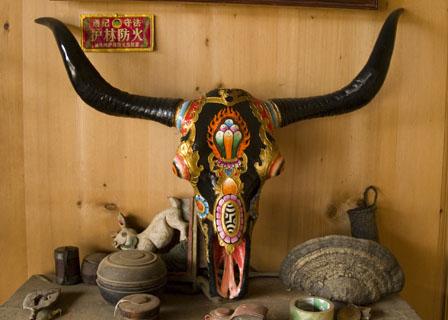Tibetan Decorated Skull Decorated Yak Skull